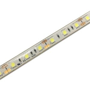SH60JA1-12W 60LED/m IP68